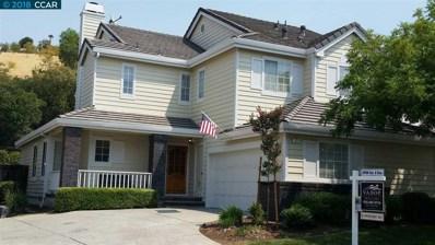 323 Saclan Terrace Place, Clayton, CA 94517 - #: 40835954