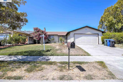 5767 Saint Paul Dr, Newark, CA 94560 - #: 40836517