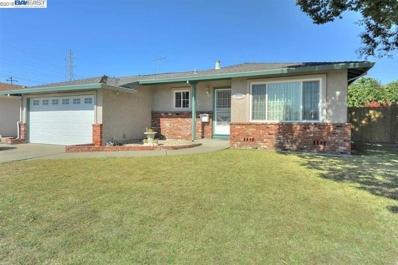 40654 Andante Street, Fremont, CA 94538 - #: 40836858