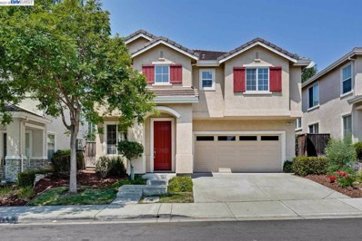 133 Elderberry Ln, Union City, CA 94587 - #: 40837415
