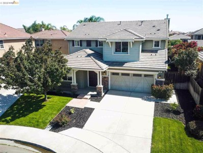 60 Sandhill Crane Court, Oakley, CA 94561 - #: 40840202
