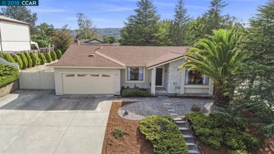 300 Ponderosa Ct, Richmond, CA 94803 - #: 40840946