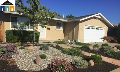 39316 Wilford St, Fremont, CA 94538 - #: 40843007