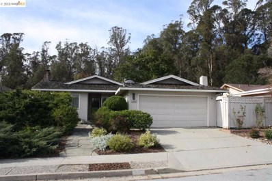 307 Cabrillo Ave, Santa Cruz, CA 95065 - #: 40846874