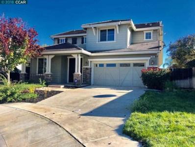 60 Sandhill Crane Court, Oakley, CA 94561 - #: 40846917