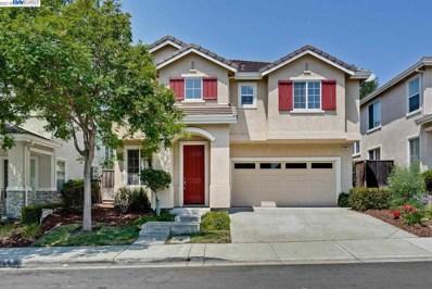133 Elderberry Ln, Union City, CA 94587 - #: 40846972