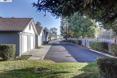 34612 Gucci Ter, Fremont, CA 94555 - #: 40849746