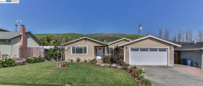 48224 Arcadian Street, Fremont, CA 94539 - #: 40857785