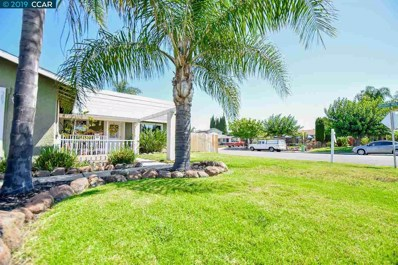 389 Collette Ct, Brentwood, CA 94513 - #: 40874923