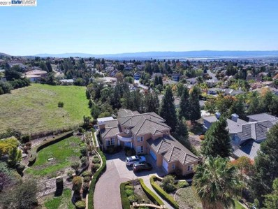 691 Vista Cerro Ter, Fremont, CA 94539 - #: 40879204