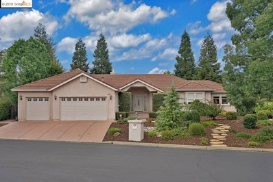 2036 Chambers Cir, Brentwood, CA 94513 - #: 40882894
