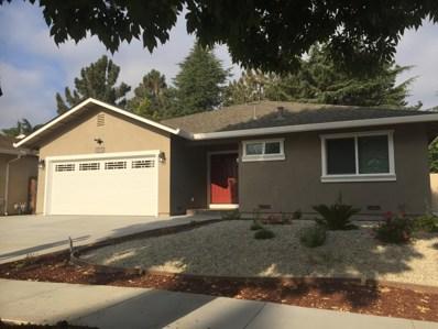 273 Vineyard Drive, San Jose, CA 95119 - #: 52156216