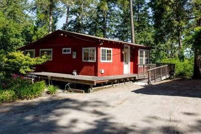 6 Pine Lane, Mount Hermon, CA 95041 - #: 52156882