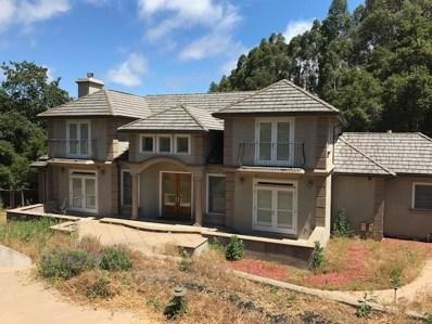 14390 Douglass Lane, Saratoga, CA 95070 - #: 52159252