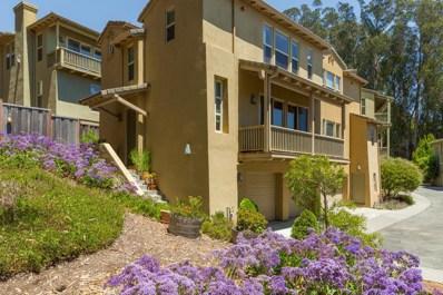 439 Southview Terrace, Santa Cruz, CA 95060 - #: 52159569