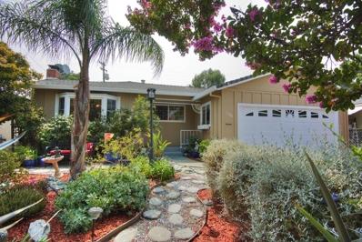 1134 Park Grove Drive, Milpitas, CA 95035 - #: 52163752