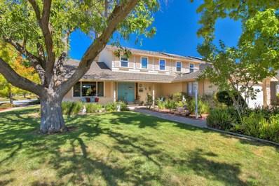 1199 Washoe Drive, San Jose, CA 95120 - #: 52163759