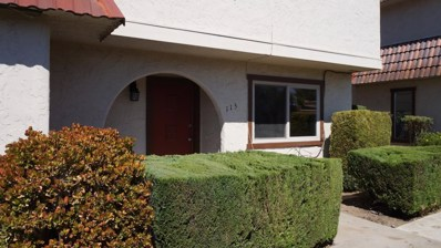 115 Villa Pacheco Court, Hollister, CA 95023 - #: 52163979