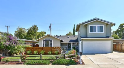 335 Pineview Drive, Santa Clara, CA 95050 - #: 52165888
