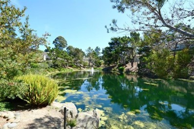 80 Glen Lake Drive, Pacific Grove, CA 93950 - #: 52166083