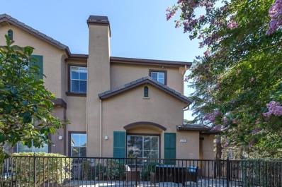 3101 White Zinfandel Place, San Jose, CA 95135 - #: 52166221