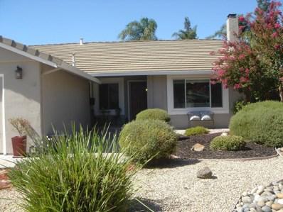 203 Pinot Court, San Jose, CA 95119 - #: 52167066