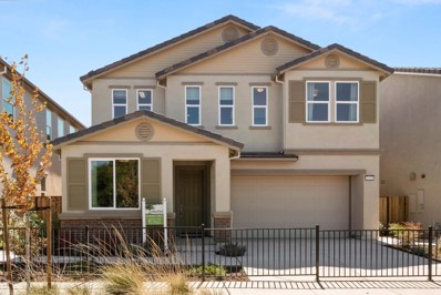 1233 Buena Vista Road, Hollister, CA 95023 - #: 52167577