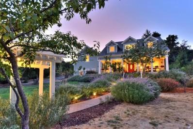 20732 Brush Road, Los Gatos, CA 95033 - #: 52167994