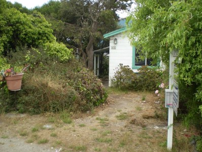 48 Harvard Avenue, Half Moon Bay, CA 94019 - #: 52168080