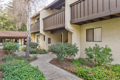 1001 E Evelyn Terrace UNIT 163, Sunnyvale, CA 94086 - #: 52177307