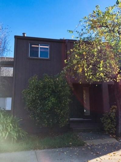 104 Tree Frog Lane, Santa Cruz, CA 95060 - #: 52179959