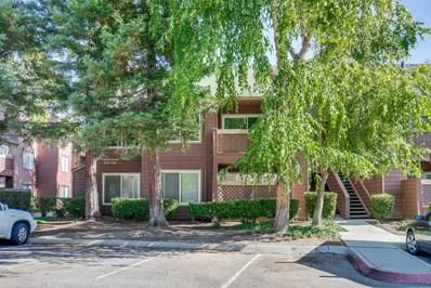 916 Catkin Court, San Jose, CA 95128 - #: 52203905
