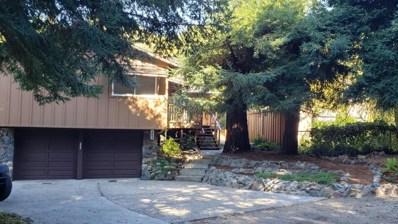 243 Windsor Drive, San Carlos, CA 94070 - #: 52208560