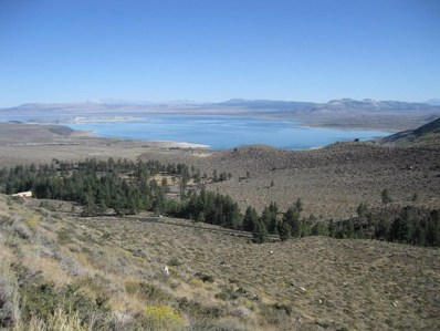 Lot #1 Lundy Lake Rd. UNIT 1, Lee Vining, CA 93541 - #: 180837