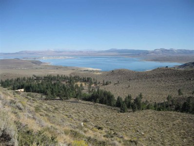 Lot #3 Lundy Lake Rd. UNIT 3, Lee Vining, CA 93541 - #: 180841