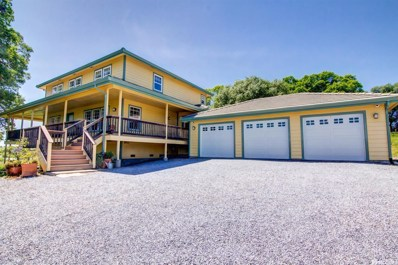 3170 State Highway 49, Cool, CA 95614 - #: 16076277