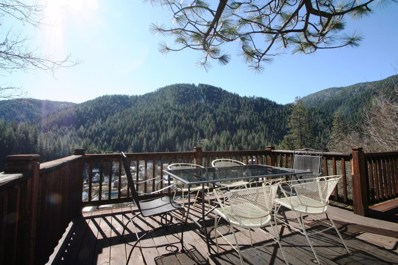 11 Bear Lane, Downieville, CA 95936 - #: 18018310