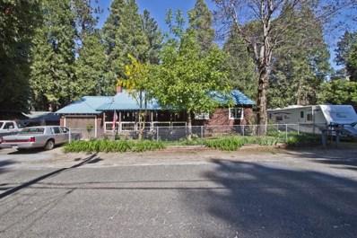 2895 North Street, Pollock Pines, CA 95726 - #: 18036732