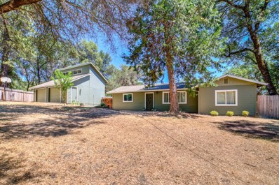 6501 Morning Canyon Road, Placerville, CA 95667 - #: 18040694