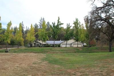 24881 Table Meadow Road, Auburn, CA 95602 - #: 18043140
