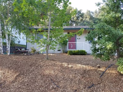 52 Frontier Drive, Jackson, CA 95642 - #: 18044524