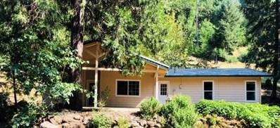 5180 Starkes Grade Road, Pollock Pines, CA 95726 - #: 18044836