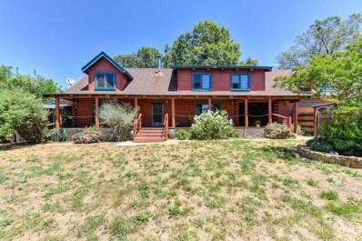 12224 Appaloosa Court, Grass Valley, CA 95949 - #: 18045432