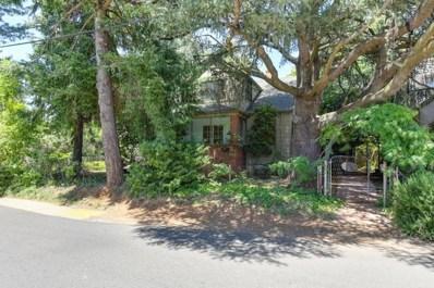 10401 Alta Street, Grass Valley, CA 95945 - #: 18045467