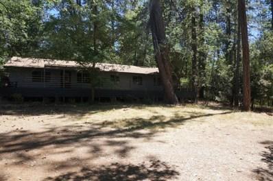 828 Evergreen Lane, Meadow Vista, CA 95722 - #: 18046267