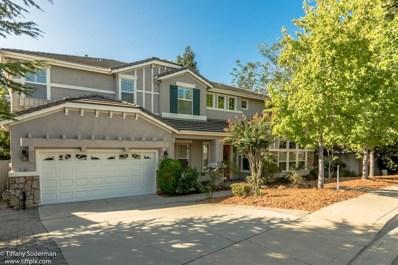 11004 Blue Wing Place, Auburn, CA 95603 - #: 18052408