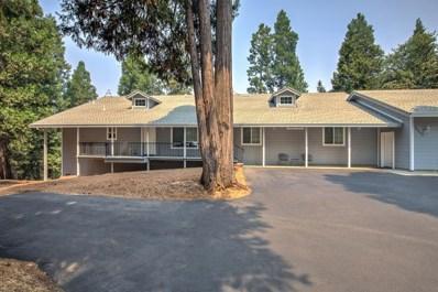 24895 Shake Ridge Road, Volcano, CA 95689 - #: 18053148