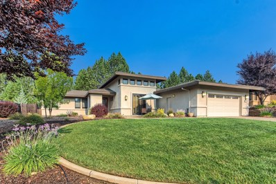 110 Emerald Lane, Jackson, CA 95642 - #: 18053152