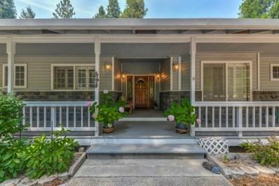 19125 E Pine Drive, Pioneer, CA 95666 - #: 18053950
