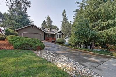 13337 Torrey Pines Drive, Auburn, CA 95602 - #: 18053991